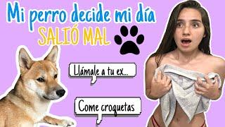 MI PERRO DECIDE MI DÍA/ Moni Rosales