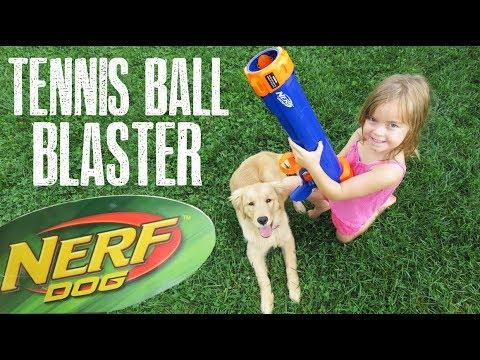 Nerf Dog Tennis Ball Blaster!