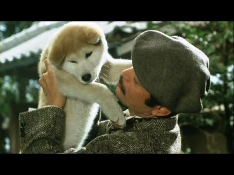 Hachiko A Dog's tale Goodbye Hachiko Monogatari - YouTube