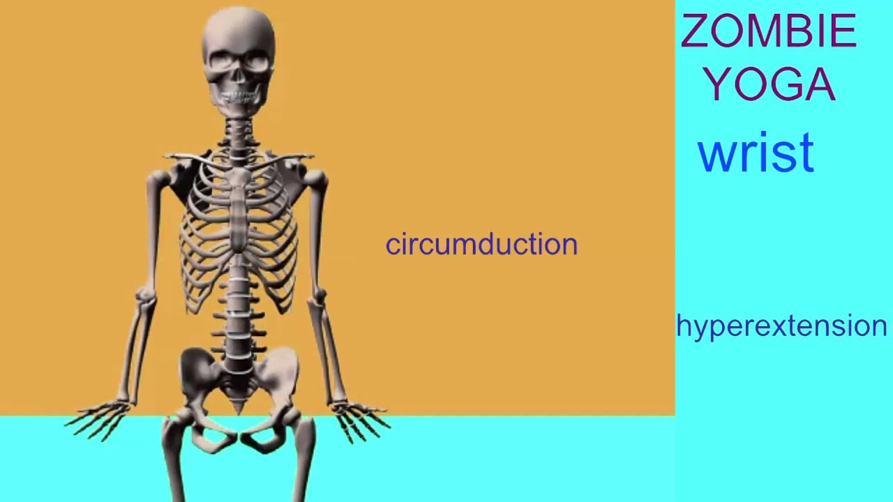 zombie yoga for anatomy students: condyloid & saddle joints - youtube, Cephalic Vein