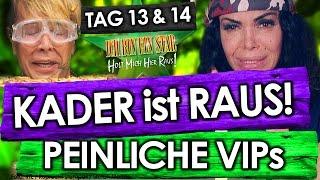 Dschungelcamp 2017 (Tag 13 & 14): Kader RAUS! PEINLICHE Buchstabier-Prüfung (IBES RTL)