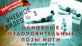 Оздоровительные позы йоги(Данный цикл видео представляет собой 10 учебно-практических занятий, проводившихся со студентами на кафедр..., 2014-11-15T21:08:42.000Z)