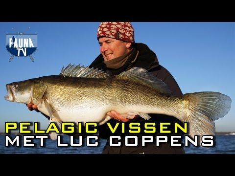 Pelagic vissen met Luc Coppens