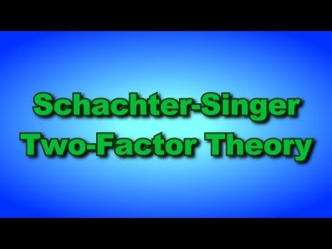 The Schachter-Singer Two-Factor Theory of Emotion [Daniel Man of Reason]