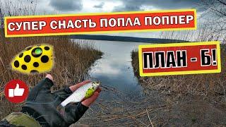Рыбалка на ПОПЛА ПОППЕР СУПЕР СНАСТЬ ПОПЛА ПОППЕР ПЛАН Б
