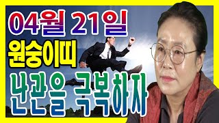 2020년 04월 21일 오늘의 운세 원숭이띠 난관을 극복 한다면 안정된 상태를 유지 할 수 있다 수미산당 …