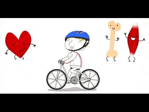 Buen uso de la bicicleta