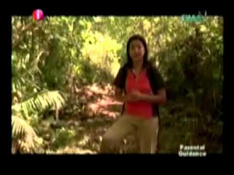 Verborgene Schätze auf den Philippinen-Treasure Hunt Philippines II
