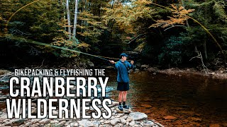 Fly Fishing & Camṗing Along The Cranberry River | Bikepacking in Monongahela National Forest
