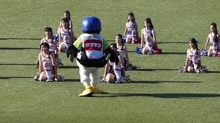 2018/7/1神宮球場にて。真面目に踊るつばみを横目に、つば九郎さんは今...