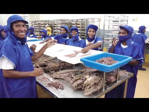 An introduction to Fishing Industry Association (PNG) Inc. commitment to sustainable fisheries