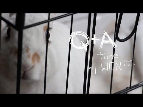 Q+A TIME BOI