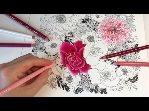 Rose Garden - Part 2: Floribunda Coloring Book
