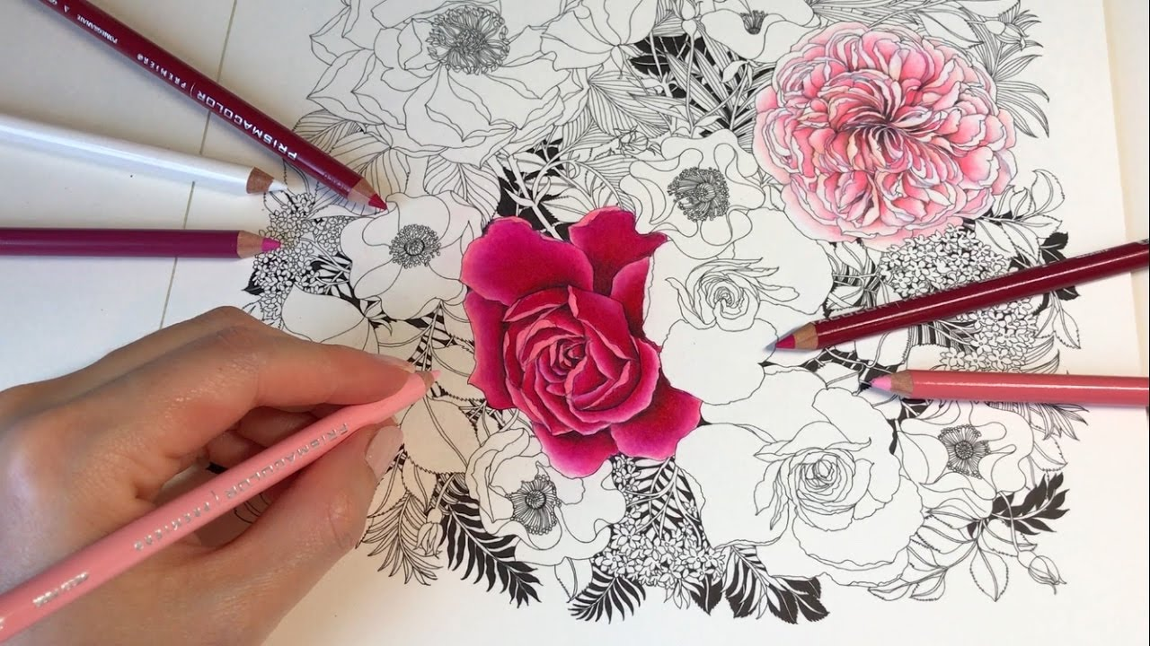 ROSE DRAWING WITH COLORED PENCILS | Rose Garden - Part 2: Floribunda ...