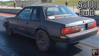 Racing a Turbo Junkyard 6.0 LS Mustang   The Sh!thorse and Nova Test and Tune in the Heat!