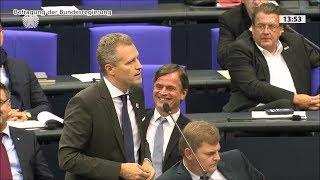 Best of Bundestag 117. Sitzung 2019