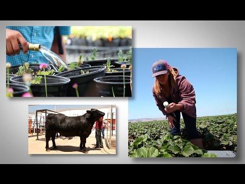 Mudturtle Media Presents: Agricultural Education