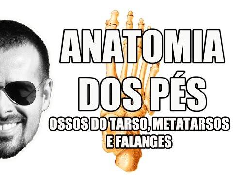 Anatomia do Pé: Ossos do Tarso, Metatarsos e Falanges - Sistema Esquelético/Ósseo - VideoAula 053