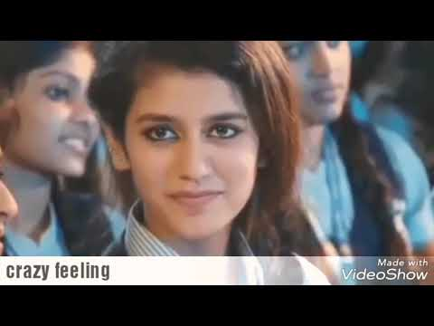 Crazy feeling song from nenu shilaja movie