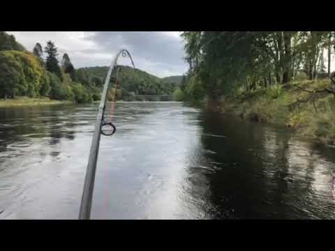 Salmon Fishing Dunkeld House Beat
