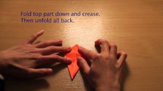 How To Make: Origami Crane (おりがみ つる)