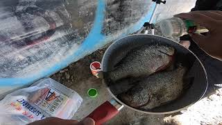 Delta Crappie and Bass Fishing