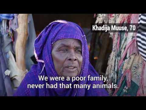 In time of drought, Somali families forced to separate to stay alive