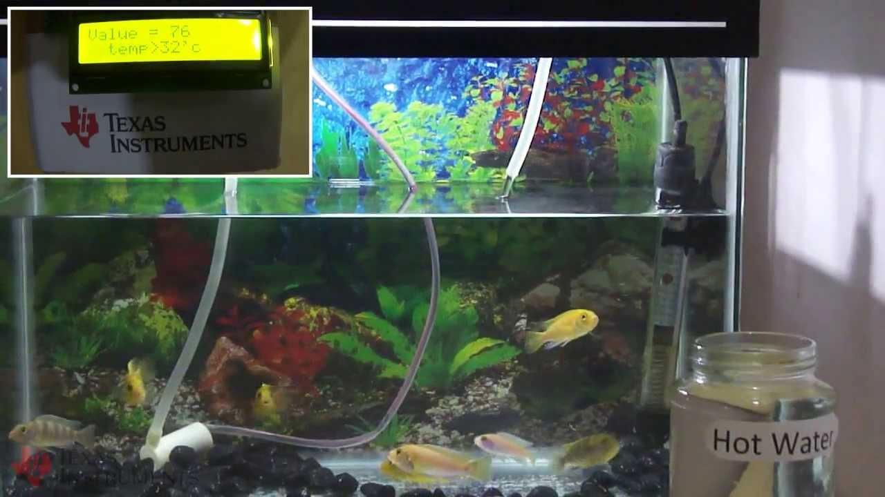 What is the temperature in the aquarium 25