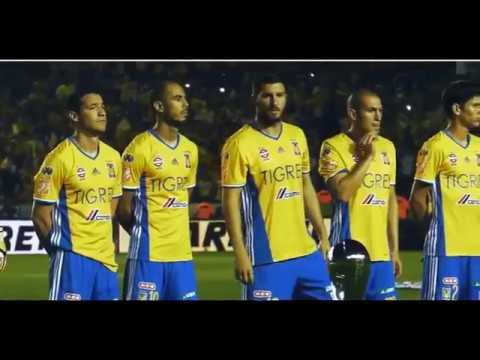 Tigres Campeón 2016 - Video Conmemorativo