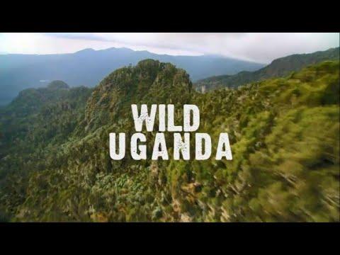 NAT GEO WILD: Дикая Уганда 2019 Документальный фильм