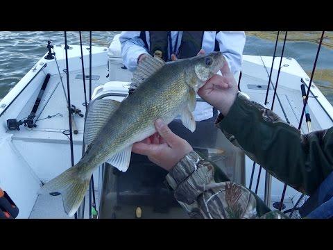 Kentucky River Sauger & Walleye