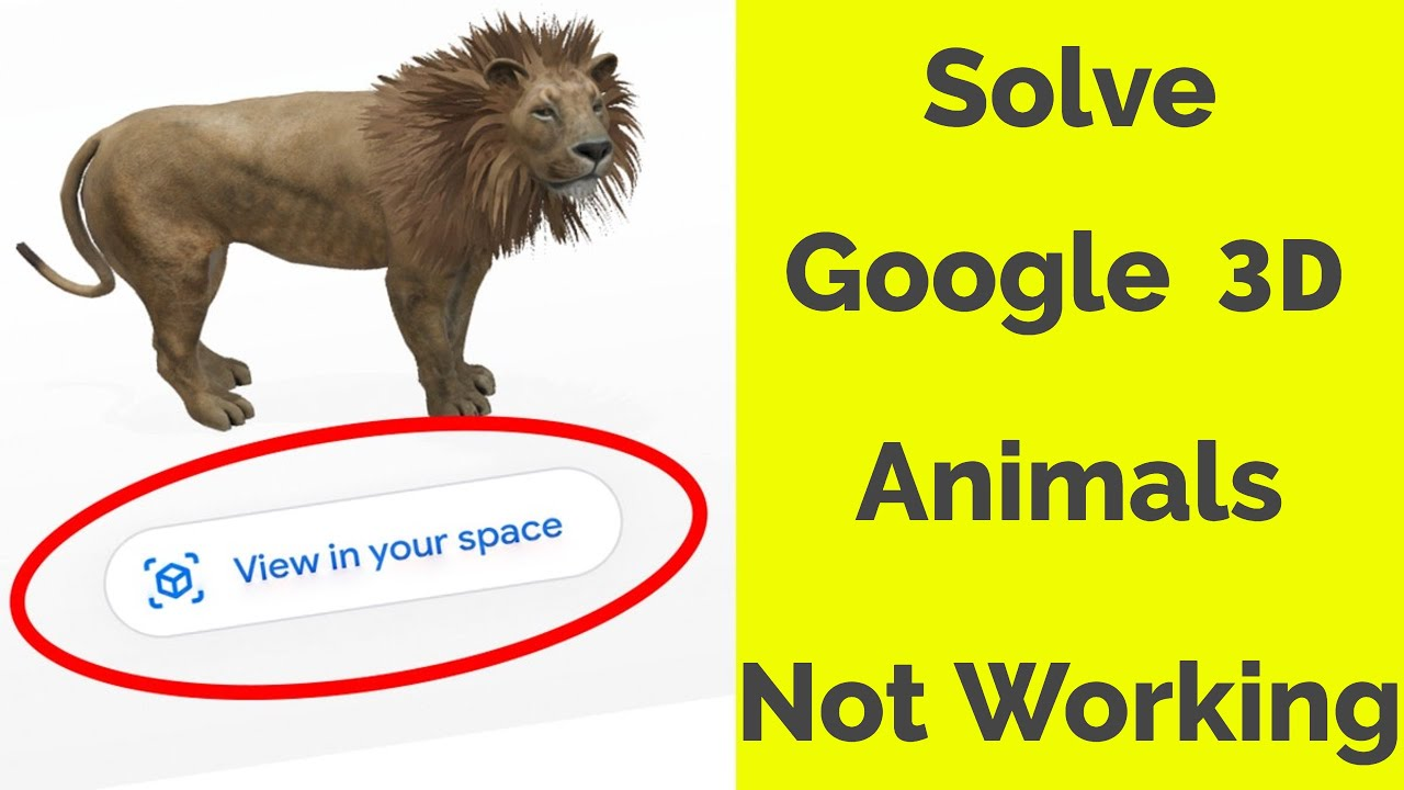 Fix Google 3d Animals Not Working View In