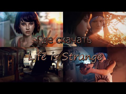 Где скачать игру Life is Strange и как её установить