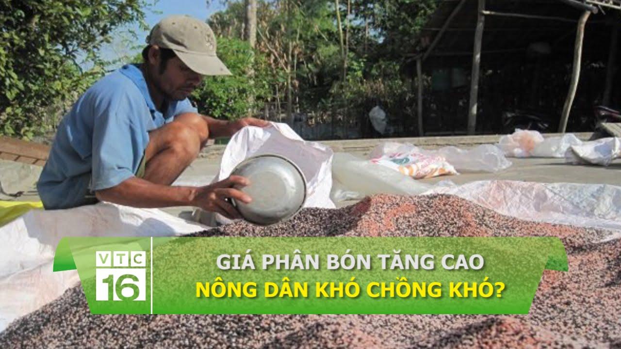 Giá phân bón tăng cao: Nông dân khó chồng khó? | VTC16