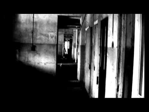 Клип Portal - Larvae