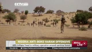 600 civilians freed from Boko Haram in military operation around Sambisa Forest