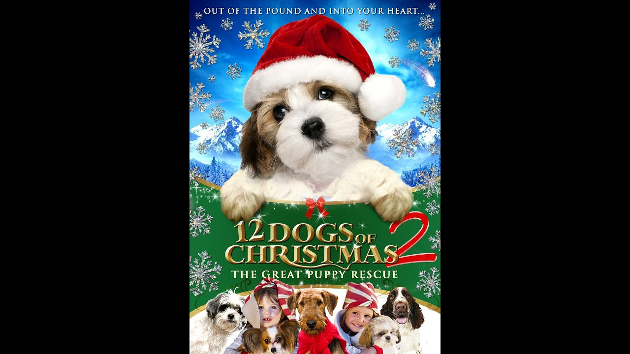 12 Dogs Of Christmas.The 12 Dogs Of Christmas 2 Official Trailer 2013