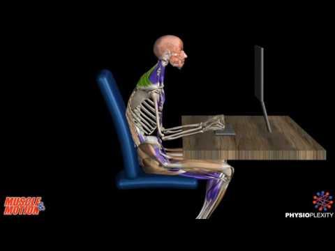 При сидении на стуле болит поясница