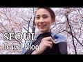 SEOUL KOREA with Dior | Spring season | Alicia Tan
