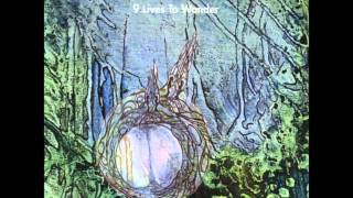 "Legendary Pink Dots ""9 Lives To Wonder"" 1994 (Full album)"