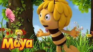 [11.21 MB] Rainbow Pollen - Maya the Bee - Episode 55