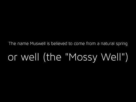 Ian Hunt Muswell Hill