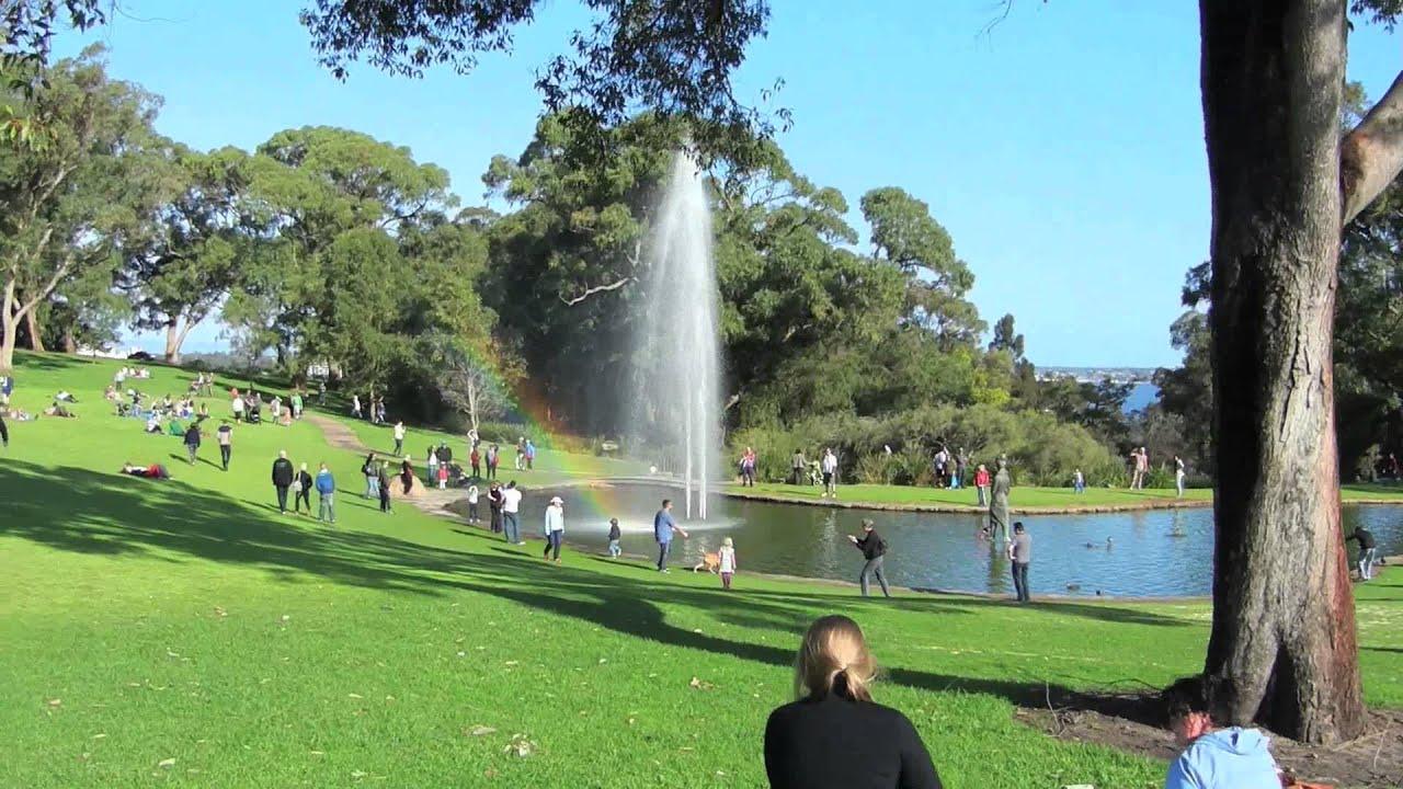 Gay dating city in san rafael california