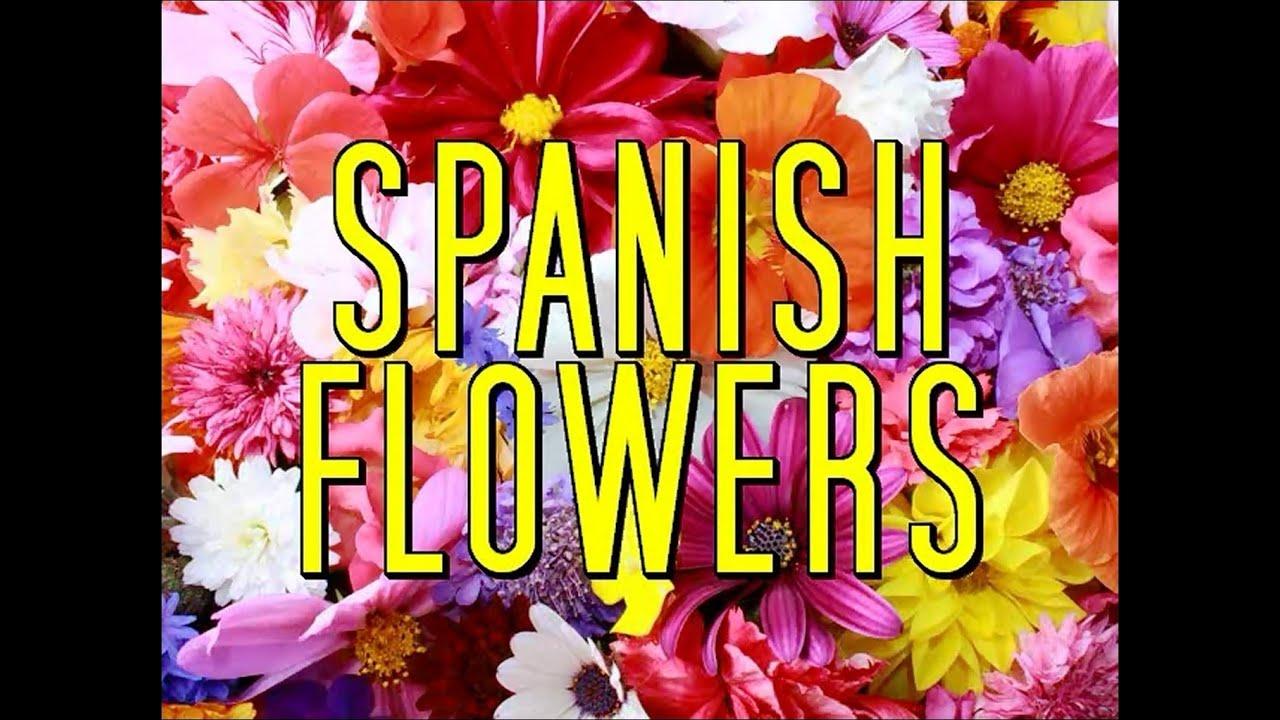 SPANISH FLOWERS