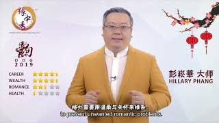 DOG Zodiac Forecast in Year 2019