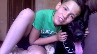 Дождались моя собака хантер и бонус!!!(, 2015-06-11T07:12:33.000Z)