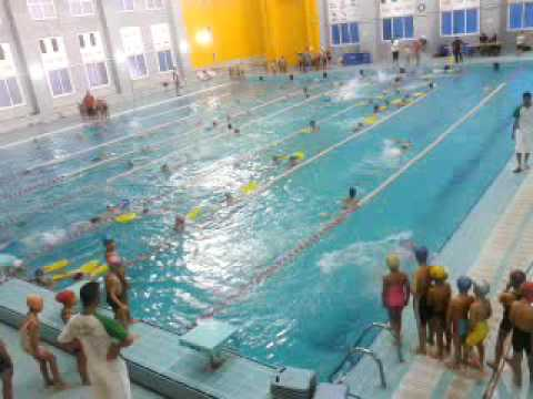 Piscine kouba la s ance des clubs youtube for Piscine algerie