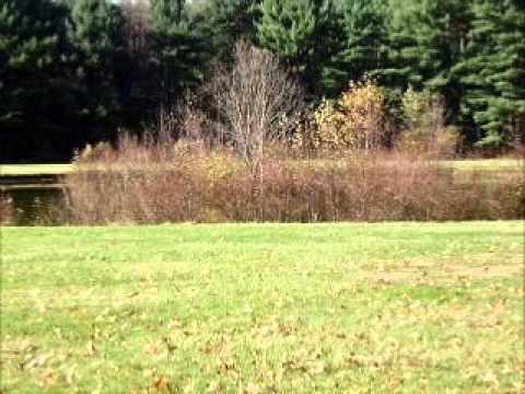 Personals in coudersport pa Coudersport Swingers on Swingular - Free Ads for Pennsylvania Swingers