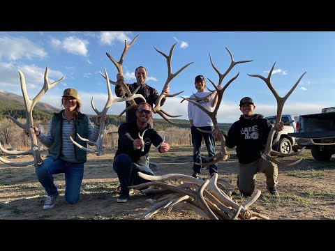 NEW MEXICO SHED HUNTING 2021!