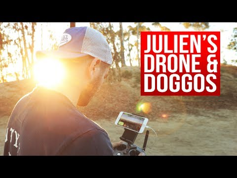 Flying drones with Julien, also dogs